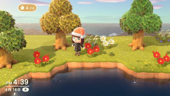 【あつ森プレイ】ざっそうを摘みに他の島へ行ってきた